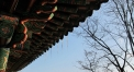 Winter in Seoul, Dec 2011 © Cas Sutherland