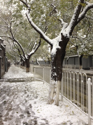 Snow in the embassy district, Chongwenmen, Beijing, Nov 2015 © Cas Sutherland